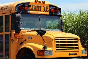Lost Gap, MS – School Bus Accident with Injuries