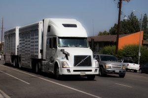 Common Forms of Trucking Company Negligence